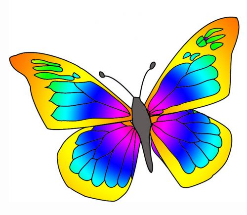 beautiful-butterfly-clipart-free-download-1